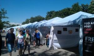 ONGFest 2013, Editia a 4-a